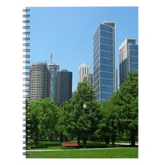 Chicago Illinois Windy City Park Buildings Destiny Journal