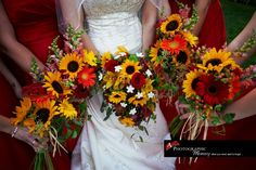 APM Fall Weddings
