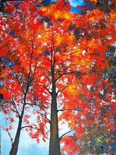1000 Images About For Tree Lovers Like Myself On