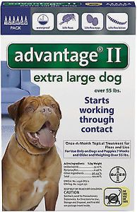 Flea and Tick Remedies 20749: Bayer Advantage Ii Extra Large For Dogs Over 55 Lbs. Lb - 6 Doses -> BUY IT NOW ONLY: $50.07 on eBay!