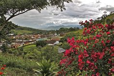 Colombian coffee landscape  heritage of humanity.  Trujillo - Valle - Colombia.