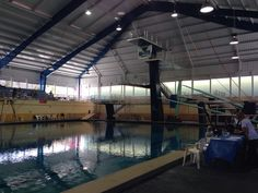 Corpus christi isd natatorium diving pinterest - Palo alto ymca swimming pool schedule ...