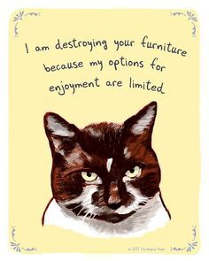 The Hilarious Illustrated Confessions Of Our Pets – 22 Pics