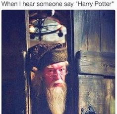 "It's like ""did I hear someone say Harry Potter?!?!"""