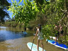 ERICEIRA SUP Stand Up Paddle Tour in the river