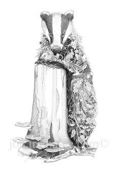 Beautiful Badger print by Cornish artist Jon Tremaine. www.jontremaine.com