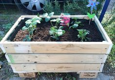 Pallets are useful and there are plenty of ways to upcycle them. And here is one, Make a DIY pallet planter with the help of this step by step tutorial.