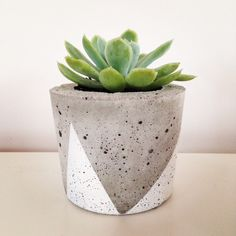 This handmade, hand painted concrete planter measures approximately 9cm high x 10 cm diameter. It weighs approximately 800gms.  This pot is perfect for succulents or other small plants and comes with a drainage hole, unless requested otherwise.   The organic nature of concrete means no two pieces are alike. Variations in the texture and finish are what makes your pot unique.  Available in your choice of a white, black or copper painted finish. But if you would prefer a different colour ...