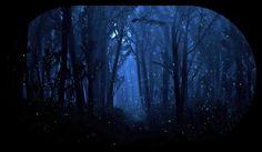 мистический лес - Pesquisa Google