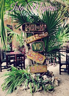 Mexican beach and paradise. Cancun Mexico, Cozumel, Beautiful Islands, Beautiful Beaches, Rivera Maya Mexico, Isla Island, Restaurant On The Beach, Hotels, Away We Go