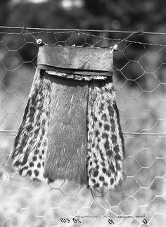 The frontal part of a Zulu man's loin-covering (isinene), Ubombo district, KwaZulu-Natal, South Africa