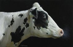 Cow Paintings On Canvas, Cool Paintings, Animal Paintings, Farm Animals, Animals And Pets, Cute Animals, Hereford Cows, Cow Drawing, Cow Ears