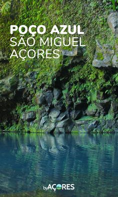 Poço Azul Achadinha Insel São Miguel Portugal : its my country and I love it ! Places In Portugal, Visit Portugal, Sao Miguel Azores, Portuguese Culture, Douro Valley, Different Shades Of Green, Travel Aesthetic, Atlantic Ocean, Heaven On Earth