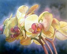 Orchids, flowers, and bromeliads. Donna Morrison is located in Tampa, FL and is a fine artist working mostly in watercolor. She teaches weekly and is available for workshops and commissions. Yellow Orchid, Limited Edition Prints, Artist At Work, Art World, Hibiscus, Orchids, Bloom, Pastel, Watercolor
