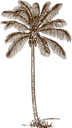 i think it's the frond overlay that gives the palm depth, so it does not look cartoon-like AND does not look too dark