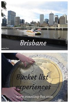 Brisbane has much to offer as a destination #daytrips #views #rivercruises #bucketlist #Australia #Brisbane Lone Pine Koala Sanctuary, Brisbane River, New Zealand Travel, Victoria Australia, Sunshine Coast, Australia Travel, Travel Around The World, Day Trips, South Africa