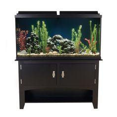 Marineland® 60 Gallon Heartland Aquarium Ensemble at PetSmart. Shop all fish aquariums online