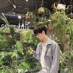 김성환(당근도령)(@hsoun9) • Instagram 사진 및 동영상 Plant Leaves, Plants, Plant, Planets
