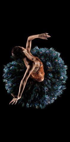 ☆ Alonzo King Lines Ballet -::- Photographer RJ Muna ♥ www.thewonderfulworldofdance.com #ballet #dance