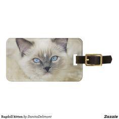 Ragdoll kitten tag for luggage