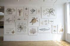 ARCHIPELAGO by Melissa Barbieri / fresco secco / sealife / coastal art