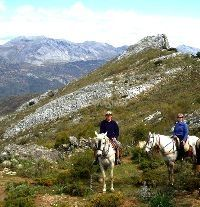 Rider/Driver needed in southern Spain to help with riding holidays. - workaway.info