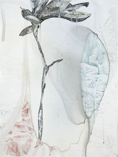 Belinda Fox, Title: Too Deep II, Size: 61 x 46 cm. Medium: Watercolour, drawing on board Collage Illustration, Illustrations, Watercolour Painting, Painting & Drawing, Mixed Media Sculpture, Fox Art, Botanical Art, Art Boards, Art Museum