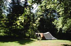 Natuurkampeerterrein Dassenburcht