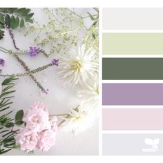 Still Tones ❤ liked on Polyvore featuring filler, backgrounds, design seeds, seeds and палитры