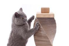 Original rascador gato carton reciclado de cartón roble y