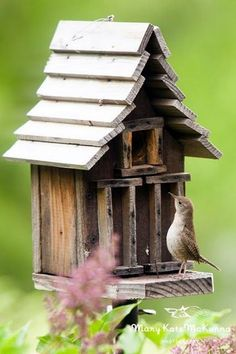Beautiful Bird House Designs You Will Fall in Love with (13)