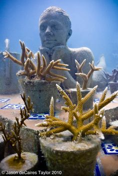 Jason de Caires, underwater sculpture