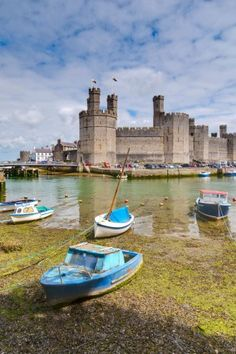 Caernarfon Castle, Wales. I visited there in 1997- would love to go back.