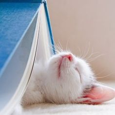 Reading is relaxing.