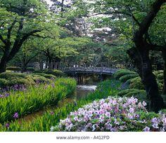 Stream, Gregariousness, Azalea, Japanese garden, Tsukiyama, Blue bridge, Iris, Hanami bridge, Kenrokuen Garden, Kanazawa, Ishika Stock Photo
