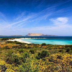 Spiaggia Isuledda - Costa Caddu, San Teodoro  Sardegna  #sardegna #instagrama