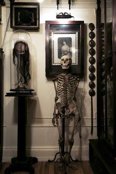 Skeleton. CREDIT: Ryan Matthew Cohn. Ryan Matthew's Collection. Photo by Sergio Royzen.