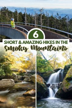 6 AMAZING Hikes in the Smoky Mountains