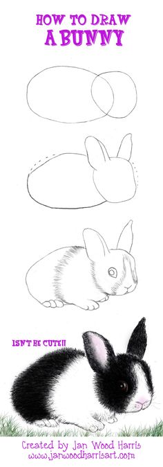 A short and simple tutorial on How to Draw a Bunny....colored pencils Hippity Hop & off ya go, give it try!