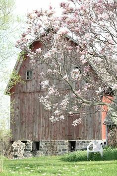 Architecture inspiration Beautiful Classic And Rustic Old Barns Inspirations No 18 (Beautiful Classic And Rustic Old Barns Inspirations No design ideas and photos Beautiful Classic And Rustic Old Barns Inspirations No 18 Country Barns, Country Life, Country Living, Country Roads, Farm Barn, Old Farm, Barn Pictures, Barns Sheds, Magnolia Trees