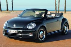 Black and Tan 2013 VW Bug
