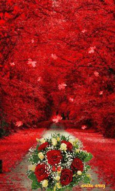 Beautiful Fantasy Art, Beautiful Gif, Beautiful Rose Flowers, Amazing Flowers, Happy Birthday Frame, Zendaya Style, Beautiful Women Videos, Love You Images, Good Morning Gif