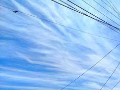 L cielo de La Libertad, Santa Elena. fotografía de Johnny Chunga @johnnychunga Ecuador #fotografia #johnnychunga #viajes Salinas Ecuador, Beach, Political Freedom, Destiny, Sky, Viajes, The Beach, Beaches