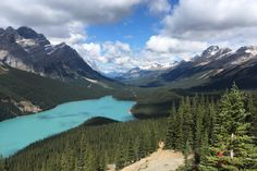 Peyto Lake Alberta Canada  || Click on the photo to discover the most incredible destinations with us :)