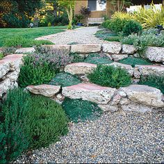 Tuck some different kinds of thyme, from silvery to green, into joints between pavers to soften the appearance of garden steps. Their leaves will release a delightful aroma when you brush against them. Design: Richard William Wogisch.
