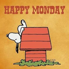 """@coolsnoopyfans on Instagram: """"My Monday 😂😃😆 . 🤗 Please Follow Us : @coolsnoopyfans . 💢Tag 💬Comment 💛Save To be featured. - - 🗣Share with your friends who love Snoopy…"""" Good Morning Snoopy, Happy Monday Morning, Happy Week, Good Morning Wishes, Monday Memes, Monday Quotes, It's Monday, Mondays, Daily Quotes"""