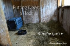 Getting ready for kidding and milking goats at the last possible minute by putting down a floor in their new room.