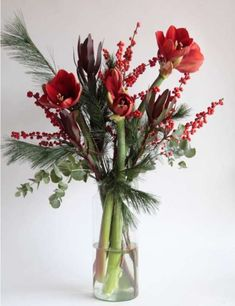 Christmas And New Year, Christmas Time, Christmas Crafts, Holiday, Creative Flower Arrangements, Amaryllis, Unique Christmas Decorations, Christmas Arrangements, Bunch Of Flowers