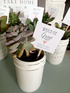 These chic little tags will add lots of love to your baby shower succulent favors! (Let Love Grow tags shown to show different shapes - square with hole, rectangular with hole, and square on stick) {TAG} THREE OPTIONS: 2x2 square tags, with hole punch in the left corner 2.25X1.5 tags with scalloped edge 2x2 square tags on stick (Twine NOT included - contact me if youd like twine added to the order) 1/8 hole punched at top of each tag Printed on OFF-WHITE card stock (other colors avai...