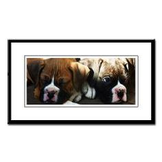 Boxer puppies small framed print  #boxer #dog #prints #posters #photography #dog #pet
